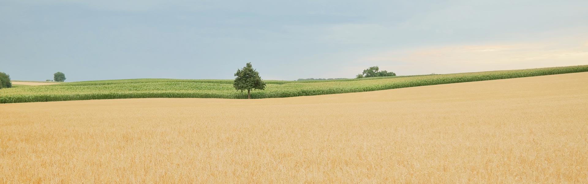 agrarslider2
